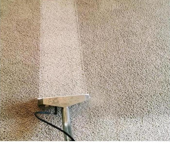Carpet Cleaning Services After