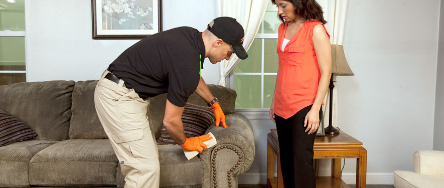 Lakewood Ranch, FL carpet upholstery cleaning