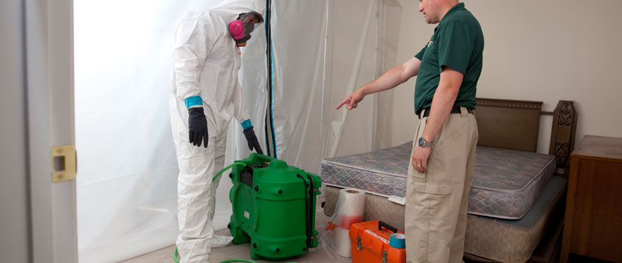 Lakewood Ranch, FL mold removal process